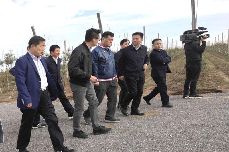 陕西华圣现代农业集团有限公司